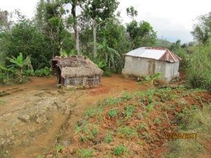 Haiti Hut
